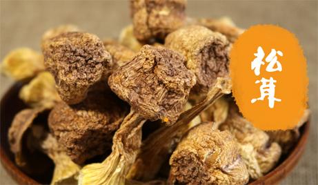 【四川】仅需45元,即可订购四川江油松茸一份(100g/袋)!全国包邮!本品为珍稀松茸,是天然的药材,富含多种人体有益物质,可促进改善心血和免疫,滋补养生!