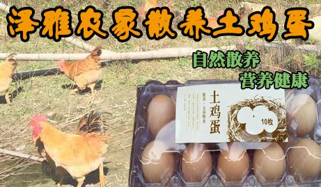 【泽雅】仅28元/斤(10个土鸡蛋)即可享受原价35元/斤(10个土鸡蛋)的泽雅农家散养土鸡蛋!土鸡蛋均产自我市泽雅农家散养的土鸡,高营养,无污染,让您吃得放心,吃得健康