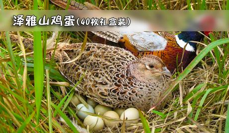 【泽雅】仅需83元即可获得原价110元的泽雅山鸡蛋礼盒装一盒(40枚装)!蛋中珍品,回归自然!纯天然放养,高营养,无污染,让您吃得放心,吃得健康!