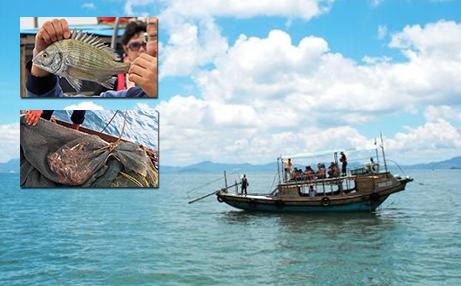 【苍南】仅需500元,即可享受原价600元的苍南渔寮出海捕鱼休闲体验游一次(1.5小时)。一网捕捞,鱼虾蟹免费带走,人数控制12人以内。感受夏日风情,接受来自海洋的馈赠!