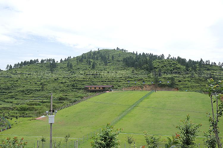 金刚尖滑草场景区位于国家4a级景区——泽雅风景区境内,距离温州